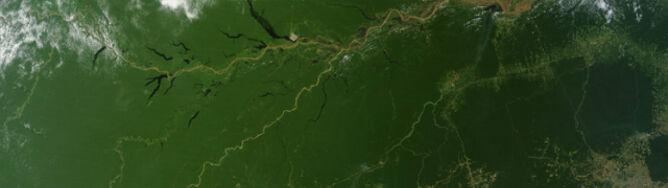 Śmierć Amazonii widziana z kosmosu