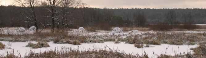 Prognoza pogody na pięć dni: chłodno i mokro. Może poprószyć śnieg