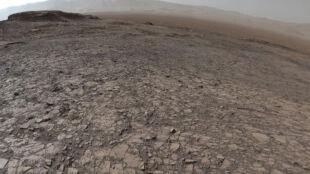 """Ludzie na Marsie? """"Musk naprawdę chce to zrobić"""""""