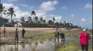Trwa usuwanie ropy naftowej z plaży Porto de Galinhas